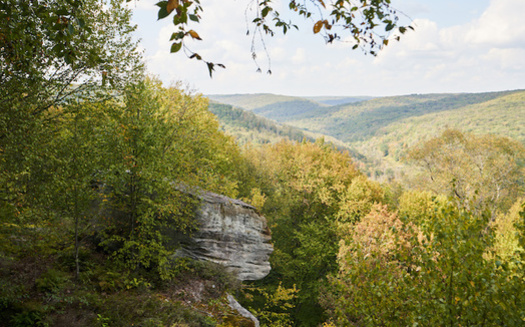 Friends of Allegheny Wilderness hopes to protect 50,000 acres of the Allegheny National Forest under the Wilderness Act. (Daniel/Adobe Stock)