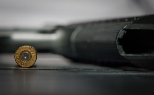 Prior to this month's health clinic shooting, Minnesota lawmakers debated certain gun control measures, yet partisan divides have blocked bills from advancing. (Pixabay)