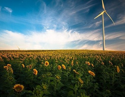 Local-choice energy policies adopted in nine states are not-for-profit models that allow communities to prioritize 100% renewable energy. (pixels/Pixabay)