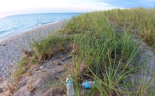 Water bottles and other plastic pollution along Lake Michigan can break down into tiny particles that hurt wildlife. (daveynin/Flickr)