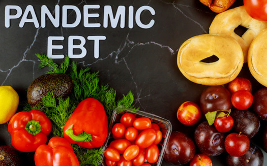 The Pandemic EBT program is expected to reach nearly 650,000 children in Indiana this summer. (Olesya/Adobe Stock)