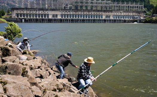 Fishing is popular near the Bonneville Dam along the Columbia River. (Nathan K/Flickr)