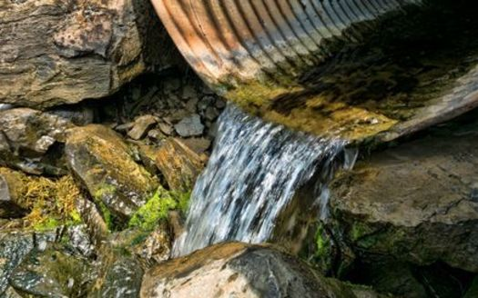 Illinois has a goal of reducing the nitrogen and phosphorus going into its waterways by 45% by 2025. But conservation groups say the state is far behind in reaching that goal, and needs more funding for these efforts. (Adobe Stock)