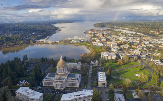Police use of force was a major focus during Washington state's legislative session. (adonis_abril/Adobe Stock)