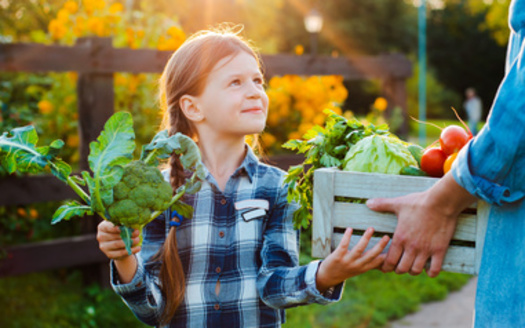 The USDA projects that $1 billion in additional SNAP benefits would lead to an increase of $1.54 billion in the nation's Gross Domestic Product. (Adobe Stock)