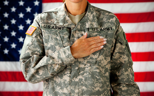 Veterans across the aisle point out that one thing they have in common is their oath to serve the Constitution and the nation. (seanlockephotography/Adobe Stock)