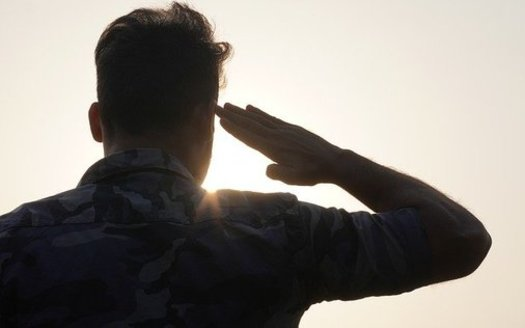 Military veterans are fighting back against what they call anti-democratic, far-right extremism by forming groups such as Veterans for Responsible Leadership and We the Veterans. (Fire FX/Pixbay)
