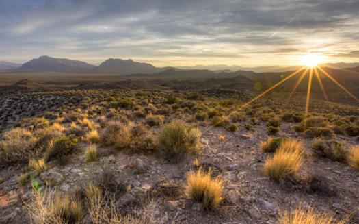 President Obama created the Basin and Range National Monument in 2015. (Bureau of Land Management)