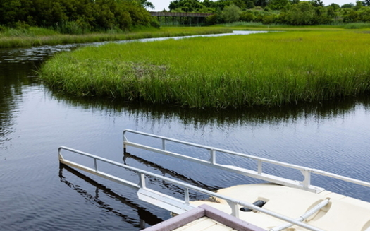Virginia's new Coastal Adaptation and Resilience Master Plan is expected to use nature-based solutions, like wetlands restoration, to help absorb the impact of severe storms and flooding. (Adobe Stock)
