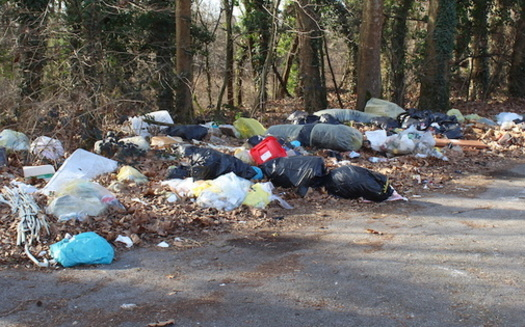 There are an estimated 50 billion pieces of litter on roadways nationwide, according to Keep America Beautiful. (Adobe Stock)