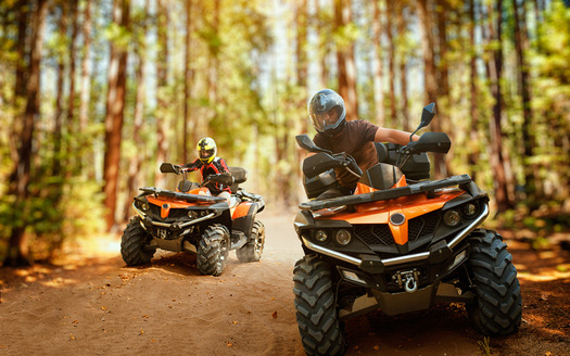 ATV environmental impacts include noise pollution, damage to vegetation, soil degradation, and disturbance to wildlife. (Adobe Stock)
