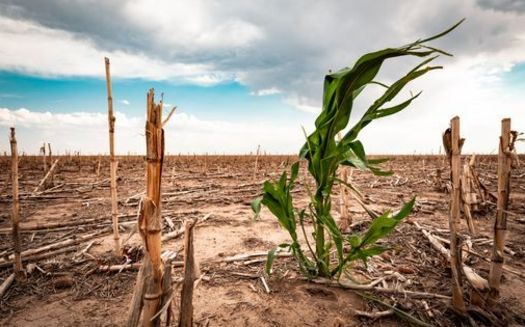 By 2050, South Dakota could see a 75% increase in the severity of widespread summer drought conditions. (Adobe Stock)