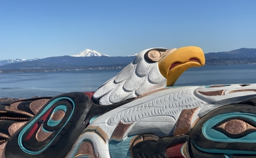 A symbolic 5,000-pound totem pole, hand-carved by Jewell James of the Lummi Nation in Washington state, will be at a blessing ceremony Saturday at Bears Ears National Monument in Utah. (#RedRoadtoDC)