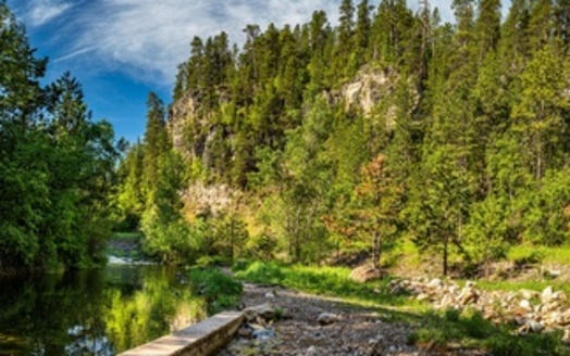 Spearfish Creek in Black Hills National Forest. (Adobe Stock)