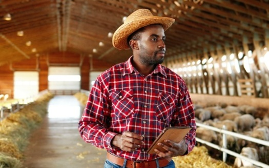 Social isolation, financial challenges and emotional fatigue are among the stressors faced by people just starting out in agriculture. (Adobe Stock)