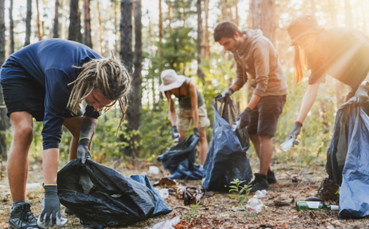 While 19.9% of litter on land comes from unsecured items in the back of trucks or trash receptacles, the vast majority originates intentionally. (Adobe Stock)