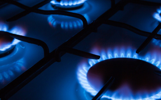 Research has found one hour of cooking can produce nitrous oxide levels that would be illegal if found outside. (avirid/Adobe Stock)