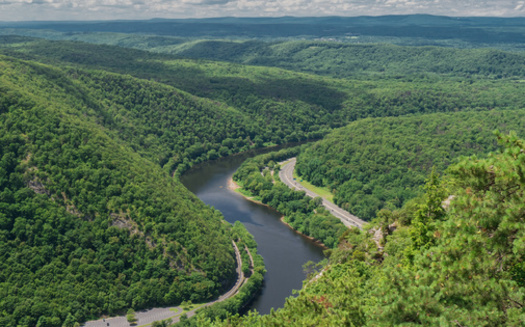 More than 2 million acres of state forest land in Pennsylvania is protected by public ownership. (Adobe Stock)