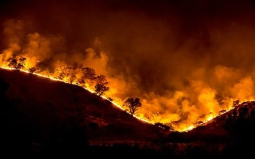 The climate resilience package includes $1.5 billion for measures to better defend the state against wildfires. (Peter Buschmann/U.S. Forest Service)