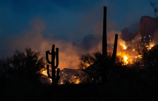 The Bighorn Fire in the Catalina Mountains near Tucson was one of several climate-driven disasters, costing Arizona more than $4 billion in 2020. (Tonia/Adobe Stock)