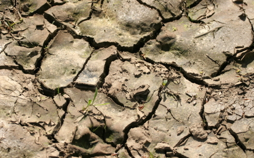 Climate scientists say drought, megafires and air pollution are becoming more extreme and more common because of climate change. (Hotblack/Morguefile)