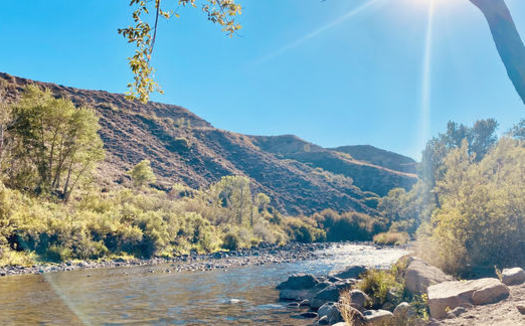 The Truckee River is considered exceptional for its water quality and importance to wildlife. (Lauren Kuhlman)