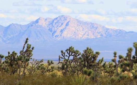 Spirit Mountain is sacred to more than a half-dozen Native American tribes. (Alan O'Neill)