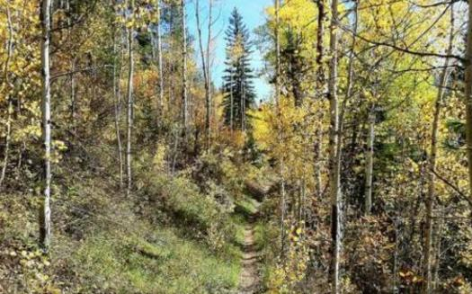 PHOTO: Hermosa Creek Trail near Durango. Courtesy The Wilderness Society.
