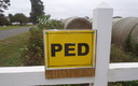 PED (Porcine Epidemic Diarrhea) sign informing public that the virus has been found on this North Carolina pig farm. Photo Courtesy of Waterkeeper Alliance.