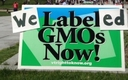 PHOTO: In Vermont, legislation to label foods made with genetically modified ingredients is set to go into effect in 2016 but is being challenged in court. There are November ballot measures in Oregon and Colorado. Photo courtesy Center for Food Safety.\