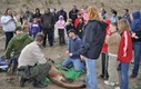 Local residents look on as Washington Dept. of Fish and Wildlife biologists outfit a sedated cougar with a GPS collar for their long-term research. Credit: Bill Hebner