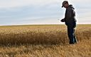 Montana Wheat Farmer Paul Kanning. Credit: Paul Kanning