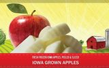 PROMOTIONAL GRAPHIC: Iowa Choice Harvest only uses Iowa-grown apples and sweet corn, and only sells its frozen offerings in the state. Photo credit: Iowa Choice Harvest