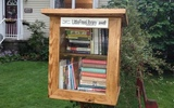 PHOTO: A metro Detroit woman hopes Detroit will soon be known as the Little Free Library capital of the world, as she works to raise money to place the community book boxes throughout the city. Photo courtesy of Detroit Little Free Library Campaign.