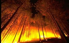 A new report blames dry conditions linked to climate change for this fall's large fires and calls for more funding for prescribed burns. (Wikimedia Commons)