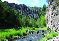 The 3.3 million-acre Gila National Forest was the the first wilderness in the United States when it was established in 1905. (earthguardians.org)