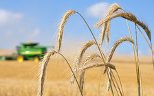 The Farm Bill expiration could mean farmers who are currently using conservation practices may not be able to continue. (Conservation Media Library)