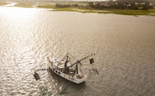 A new proposal aims to make North Carolina's shrimp-trawling industry more sustainable by lessening the amount of fish that are caught in shrimp nets as bycatch.