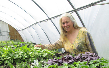 PHOTO: Jane Hawley Stevens, an herb-growing sustainable agriculture entrepreneur, hosts a July 25 workshop in North Freedom, Wis., for women in agriculture. Photo courtesy Four Elements Herbals.