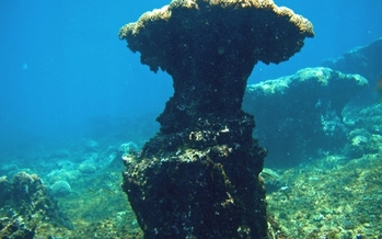 PHOTO: Ocean acidification is eroding coral reefs, like this one in Pacific Panama. Photo credit: Derek Manzello