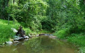 Senate Bill 1255, just signed into law by Gov. Tom Corbett, is aimed at reducing the amount of polluted stormwater that ends up in Pennsylvania's streams and rivers. Photo courtesy of Public Domain Pictures.