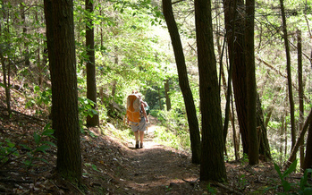 PHOTO: With hundreds of miles to explore nearby, Tellico Plains is being designated as a