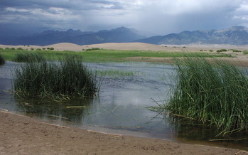 PHOTO: The Public Lands Renewable Energy Development Act would redirect some of the profits from renewable energy generation on public lands to land and wildlife conservation efforts, an idea a new poll says a majority of Coloradans support. Photo courtesy Colorado Wetland Information Center.