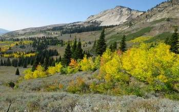 PHOTO: Another round of public hearings is scheduled this week about Idaho's proposal to demand that the federal government turn land over to Idaho. Photo of Boise National Forest courtesy of U.S. Forest Service.