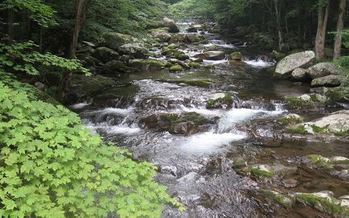 PHOTO: The EPA is taking comments on a proposed rule that would clarify which waterways receive protection under the Clean Water Act. Photo courtesy of Wild Virginia.