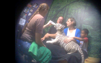 PHOTO: It may look like fun, but such close proximity to exotic animals invites trouble, according to an undercover investigation of Virginia's Natural Bridge Zoo. In addition to human safety issues, investigators say they found evidence of animal neglect and abuse. Photo courtesy Humane Society of the United States.