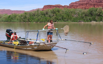 PHOTO: A new study quantifies the value of the Colorado River to a variety of industries across the seven Basin states, and says it is directly linked to the health of Colorado's economy. Photo courtesy of U.S. Fish and Wildlife Service.