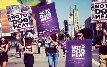 PHOTO: A California animal-rights group aims to raise awareness of cruelty involved in the dog meat trade in the United States and abroad. Photo courtesy: No To Dog Meat.