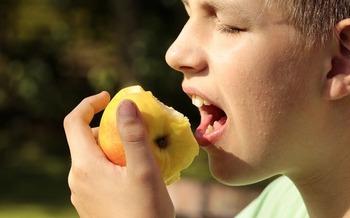 More than 800,000 students in schools across Maryland are set to take a synchronized crunch into an apple at 9:15 Wednesday morning. While not just for students, the Hear the Maryland Crunch Initiative is intended to promote school breakfast. Credit: Sipa/Pixabay.com.