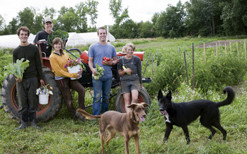PHOTO: The 2015 Ohio Sustainable Farm Tour and Workshop Series kicks off in June offering  people across Ohio the chance to experience life on the farm and learn new skills. Photo courtesy of Sunseed Farm.<br />